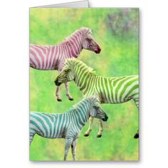 Colorful Zebras Cards