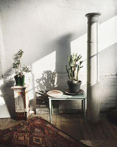 shadows and potted plants / sfgirlbybay Modern Moroccan, Moroccan Design, Deco Nature, San Francisco Girls, Interior Design Inspiration, Hallway Inspiration, Style Inspiration, Home And Living, Living Room