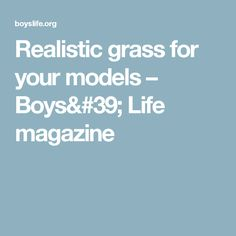Realistic grass for your models – Boys' Life magazine