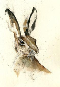 gordywright:  gordywright  Hare 5  Source:Tumblr