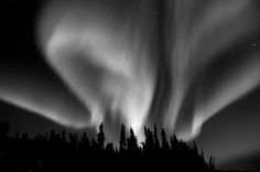 Image result for northern lights in black.and white