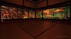 Hosenin temple / 宝泉院