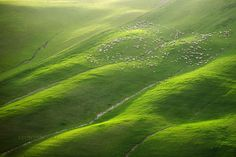 Frantisek Drtikol Profile Of A Nude Young Girl Czech - The mesmerising beauty of moravian fields photographed by marcin sobas