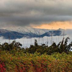 instagram/steve_cattanach Ventura California, Mountains, Nature, Travel, Instagram, Naturaleza, Viajes, Destinations, Traveling