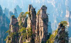 Tianzi Mountain Area
