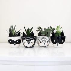 The situation is very monochrome here ()but the plants are doing fine! planter plantpot fox batman superhero monochrome succulents is part of Ceramic flower pots - Painted Plant Pots, Painted Flower Pots, Flower Pot Design, Decoration Plante, Green Decoration, Plastic Bottle Crafts, Plastic Bottles, Ceramic Flower Pots, Succulents In Containers