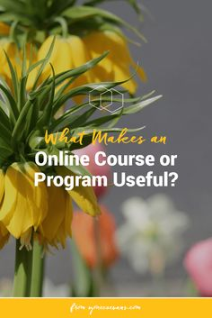 If you want to create an online course people will start, finish, and value, it needs to do these 3 things. Click to read them all. (scheduled via http://www.tailwindapp.com?utm_source=pinterest&utm_medium=twpin&utm_content=post63155002&utm_campaign=scheduler_attribution)