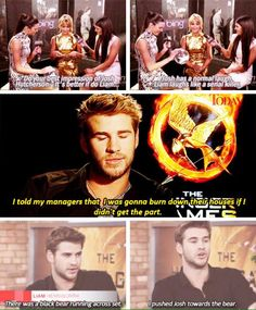 I think Liam Hemsworth could easily survive the hunger games. Hunger Games Memes, Hunger Games Cast, Hunger Games Fandom, Hunger Games Catching Fire, Hunger Games Trilogy, Katniss Everdeen, Tribute Von Panem, Jenifer Lawrence, Jokes
