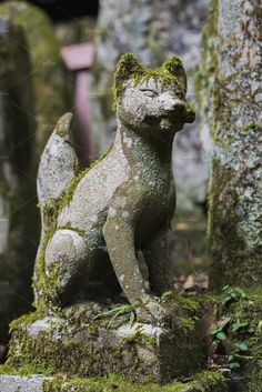 kitsune statue with scroll by Michaela Warthen Photo on Japanese Fox, Japanese Shrine, Japanese Culture, Aesthetic Japan, Japanese Aesthetic, Tamamo No Mae, Fox Spirit, Japanese Festival, Foxes Photography