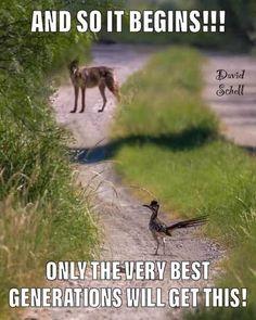 Animals Discover 63 Ideas memes dirty jokes lol for 2019 Funny Quotes Funny Memes Hilarious Jokes Funny Art Funny Cartoons Funny Comics Cartoon Humor Cartoon Fun Funny Love, Stupid Funny, Really Funny, Funny Stuff, Random Stuff, Funny Happy, Funny Cartoons, Funny Comics, Funny Memes