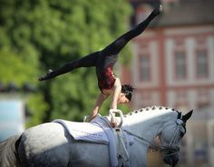 If I ever started a new sport, I would do vaulting. Horse Girl, Horse Love, Trick Riding, All About Horses, Horse Photography, Equestrian Style, Vaulting, Horse Riding, Horseback Riding