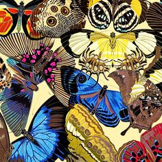 Vintage Butterflies by DecorativeDesignWKS