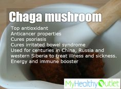My Healthy Outlet: Your online outlet for high-quality #Chaga_Mushroom High-quality Chaga product available at best possible prices!  Instant Chaga, Chaga Mushroom tincture and more …