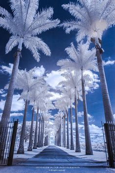 Types Of Photography, Image Photography, Nature Photography, Nature Pictures, Cool Pictures, Beautiful World, Beautiful Places, Winter Scenery, Snow Scenes