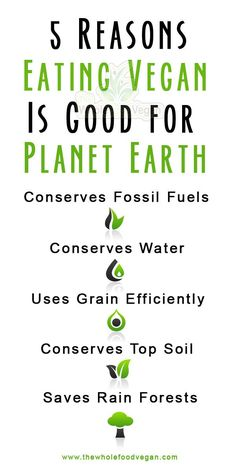 5 reasons why eating vegan is good for the environment!