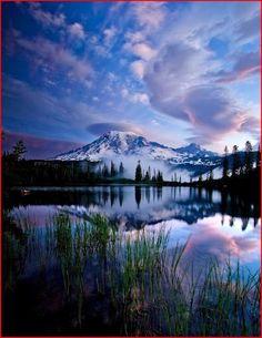 Mt Rainer National Park