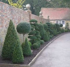 Isn't this the most amazing Topiary border? Created with cones, balls and cloud trees. We love it. #hedgesgardendesign