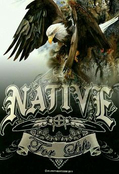 Native for Life Native American Warrior, Native American Pictures, Native American Artwork, Native American Wisdom, Native American Beauty, Indian Pictures, Native American Tribes, American Indian Art, Native American History