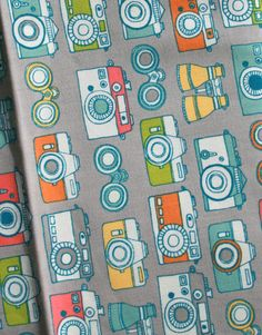 Cameras - Birch Fabrics Photography and Summer Travel