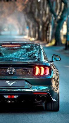 Ford Mustang Bullitt, Shelby Mustang, Mustang Cars, Shelby Gt500, 1973 Mustang, Mustang Gt500, Ford Gt40, Techno Wallpaper, Hd Wallpaper