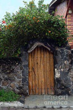 Puerto Ayora Door In The Galapagos~Catherine Sherman
