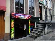 The Bassment Coffeeshop at Oudezijds Achterburgwal 61, Amsterdam.  This is in the very heart of the red light district situated amongst the famous red light windows. In fact 59 in this photo is one. Nearby hotels include Hotel Royal Taste and Hotel 83 which are also on the canal side.  The Bassment has a bar upstairs. Dutch law states that you cannot sell alcohol directly within a Coffeeshop so many establishments artificially split into two to get around it.  Photo taken November 2012.