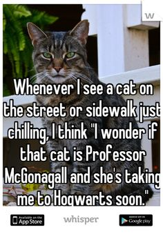"Whenever I see a cat on the street or sidewalk just chilling, I think ""I wonder if that cat is Professor McGonagall and she's taking me to Hogwarts soon."""
