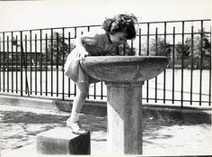 Water Fountain in Marine Park, Flatbush Brooklyn, via Flickr.