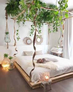 Urban Jungle Room with pallet bed. Urban Jungle Room with palle Bohemian Bedrooms, Bohemian Decor, Bohemian Bedroom Design, Blue Bedrooms, Boho Chic, Aesthetic Bedroom, Boho Aesthetic, Home Bedroom, Bedroom Ideas