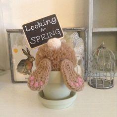 filihunkat: Looking for spring
