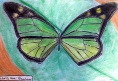 butterfly in pastel