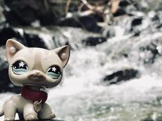 I stood in freezing mountain water for this theme Custom Lps, Album Covers, Box Covers, Lps Accessories, Lps Cats, Lps Littlest Pet Shop, Mountain Waterfall, Water Pictures, Pets For Sale