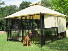 Luxury dog House We will attach this to the Dog house so he has a fenced in area :-)
