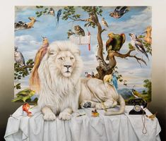 Kate Bergin   Song to a White Lion