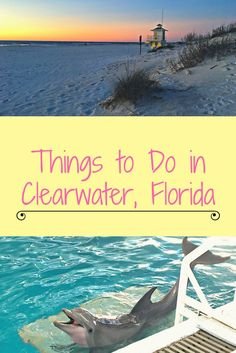 A vacation in Florida is always fun and exciting. Florida Vacation, Florida Travel, Vacation Spots, Travel Usa, Florida Trips, Vacation Ideas, Travel Tips, Vacation Rentals, Travel Hacks