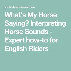 What's My Horse Saying? Interpreting Horse Sounds - Expert how-to for English Riders
