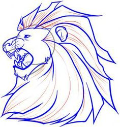 how to draw aslan step 5