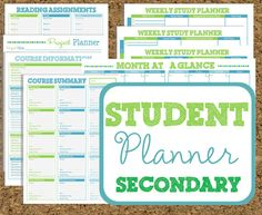 Student Organizers-College and graduate students as well as high schoolers would benefit from these study planners!