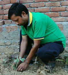22 मई 2016 को 327 वे दिन लगातार पौध रोपण के क्रम में खेल क्रान्तिअभियान /पर्यावरण शुद्धिकरण अभियान के संस्थापक/महासचिव- अनिल कुमार सिंह,द्वारा 1 जुलाई 2015 से लगातार प्रति दिन किये जा रहे पौध रोपण के क्रम में 327 वे दिन हरा भरा रहे धरा  के उद्देश्य से जे.पी.पुरम् कॉलोनी,पटेलनगर,अनगढ़,मिर्ज़ापुर में अनुराग जी के प्लाट पर पेडिलेंथस के पौध का रोपण अभिनव सिंह के सहयोग से किया।