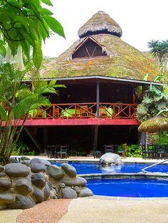 La #piscina tiene #beneficios para tu #salud, además de #relajarte. Deja de lado el #estrés en #ArasháResort