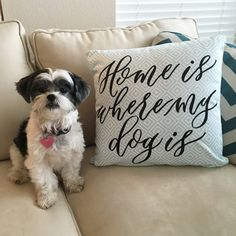 Home is where my dog is- Decorative Pillow $28