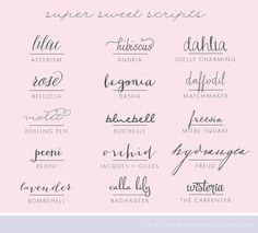 Script Fonts ...super sweet ... found on blog: ON THE SPOT STUDIO Customwork ...
