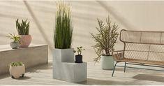 Heba Two Tier Fibre Cement Planter, Grey Trough Planters, Cement Planters, Tiered Planter, Concrete Jungle, Home Furnishings, Fiber, Grey, Plants, Furniture