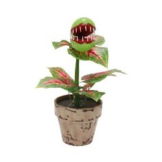 Michael's 17-Inch Handcrafted Halloween Monster Venus Fly Trap