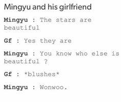 im sure his girlfriend will break up with him after he said that lmao Mingyu Wonwoo, Seungkwan, Woozi, Seventeen Memes, Seventeen Wonwoo, Astro Sanha, Day6 Sungjin, Carat Seventeen, Drama Memes