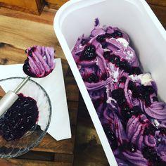 Real fruit blueberry lavender ice cream at Lavender Backyard Garden #hamilton #newzealand #travel