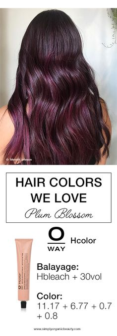 Gorgeous plum brown hair color idea for brunettes for Fall 2017! @meredithabloom working her magic with #Oway #Hcolor and #Hbleach.