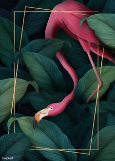 Tropical flamingo on a rectangle golden frame illustration premium image by Aom Woraluck eyeeyeview Flor Iphone Wallpaper, Iphone Background Wallpaper, Bird Wallpaper, Painting Wallpaper, Screen Wallpaper, Wallpaper Awesome, Painting Art, Flamingo Wallpaper, Plakat Design