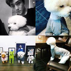 """brbcrawlingtokorea: """"""""Sehun and Vivi """" """" Kaisoo, Chanbaek, Chanyeol, Sehun Vivi, Exo Showtime, Exo 2014, Xiuchen, Exo Memes, Funny Tumblr Posts"""