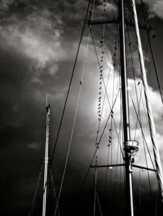 Towering Masts black and white multiple sizes by WinchesterRed, $18.00